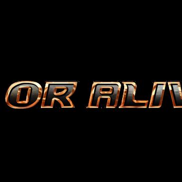 DEAD OR ALIVE 6 Hits Evo 2018